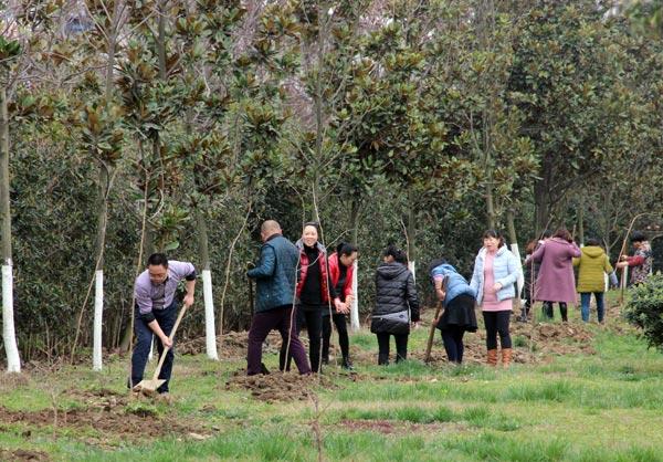 绵阳生产基地开展2017年植树活动