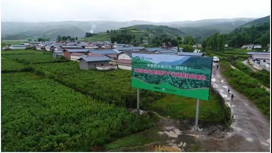 【中国日报】好bob娱乐品牌的力量:凉山州布拖县火灯村种植中药材走向脱贫致富路