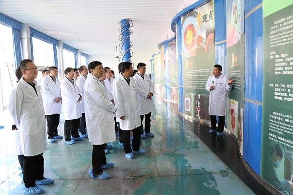 宜宾市党政代表团莅临好医生攀西药业考察指导