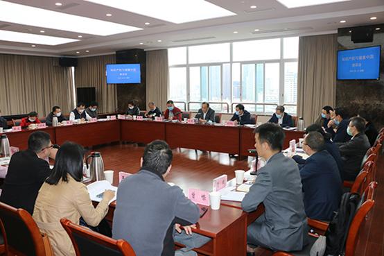 """耿福能董事长参加2020年""""知识产权与健康中国""""座谈会"""
